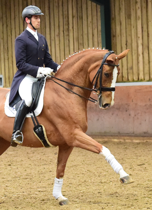 Anthony Lyons – Dressage rider and trainer.